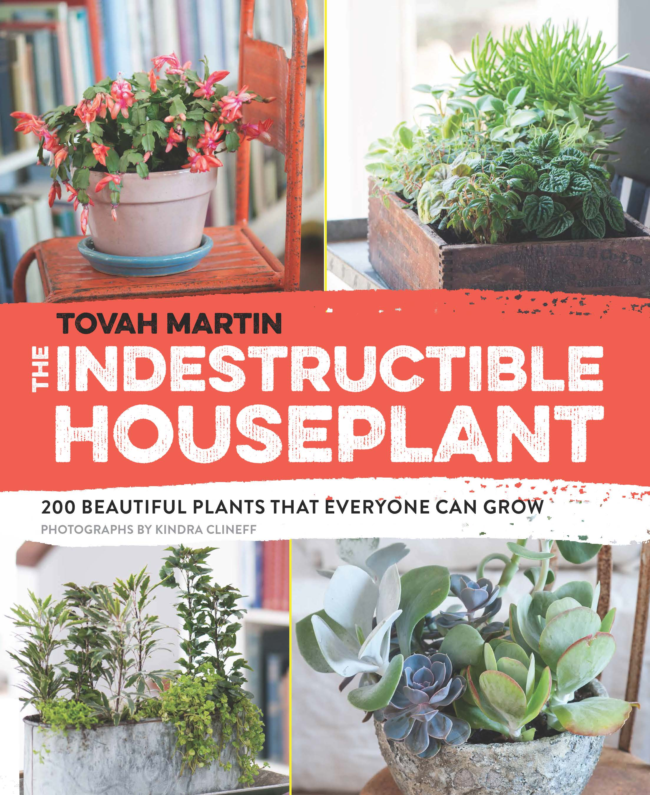 Martin_The Indestructible Houseplant_v1_07302014